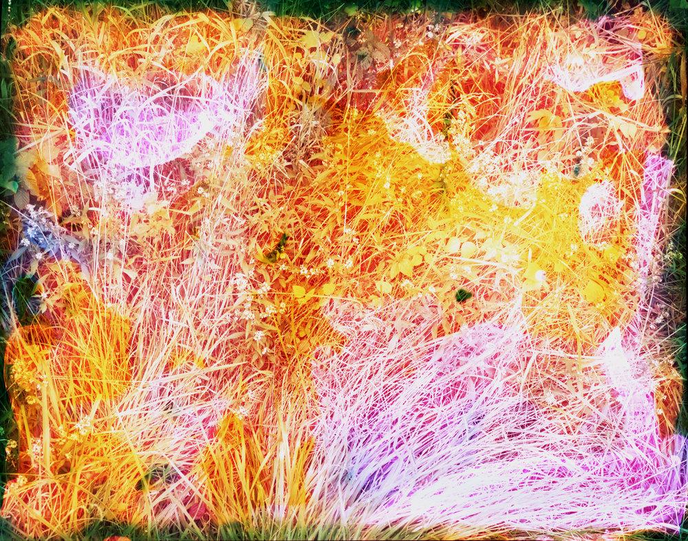 Reenactment 101 (Lavender Grass), 32 x 40 in, 2014