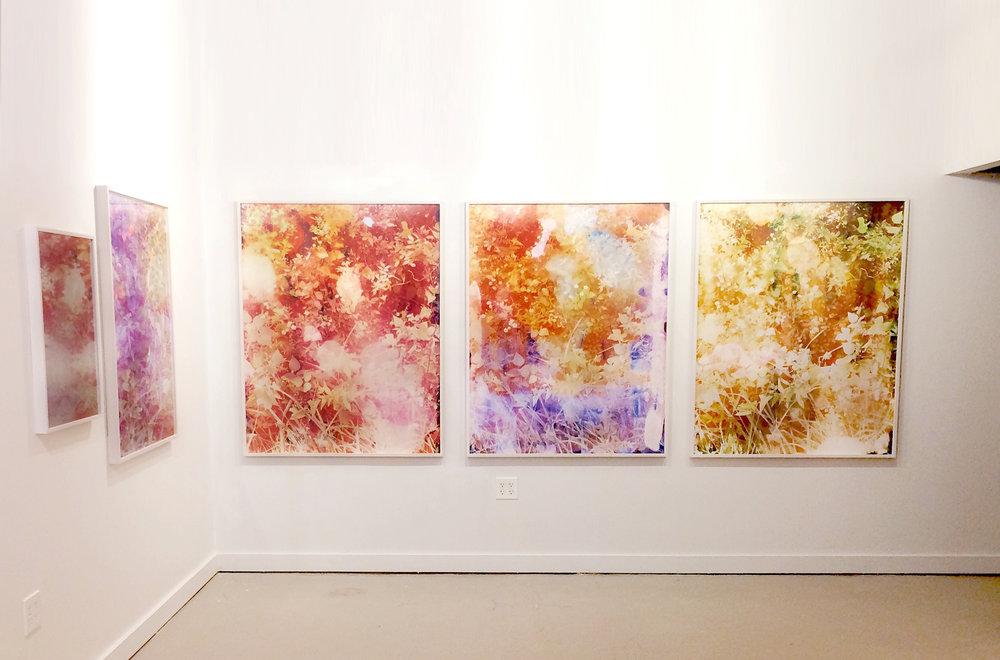 installation harts gallery2.jpg