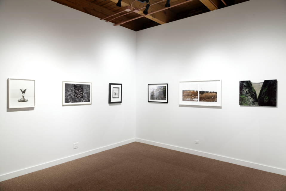 Field Study  David Weinberg Gallery