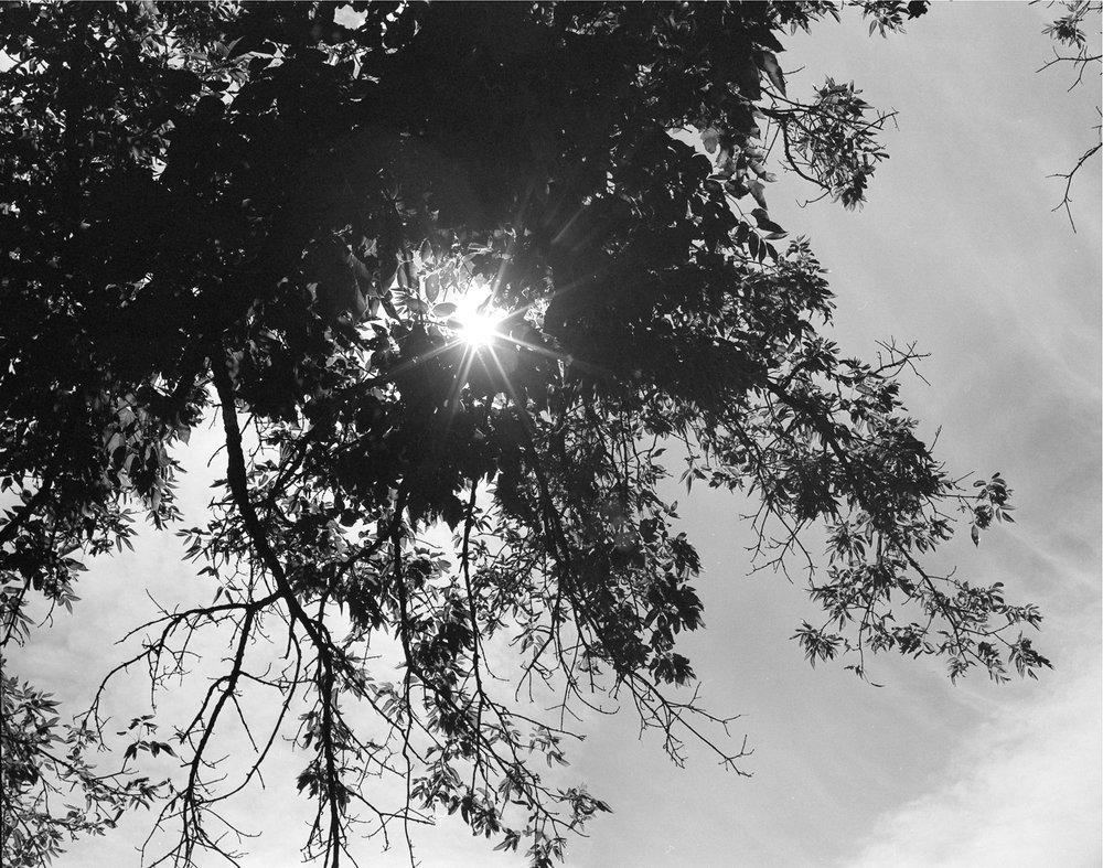 Sun, 2013