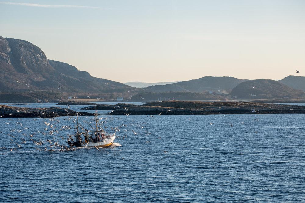 Fishing boat Norway