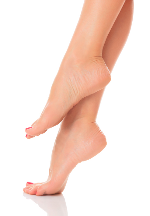 Well-groomed-female-feet-177372453_494x710.jpeg
