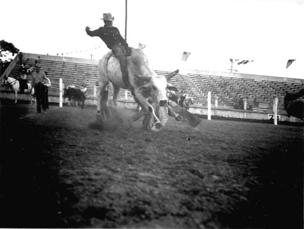 Uncle Pete Lakeland rodeo.jpg