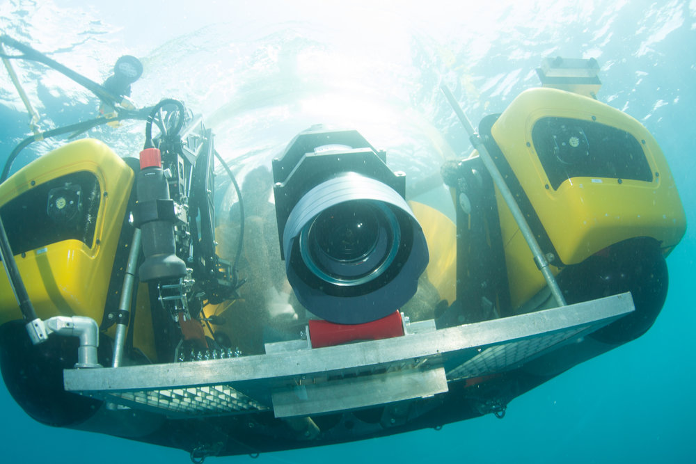 2015_Galapagos_Science&Guest_1159.JPG