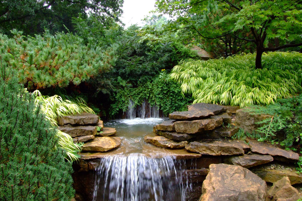 INN_Rock-Garden-in-August_Anne-Riggs.jpg