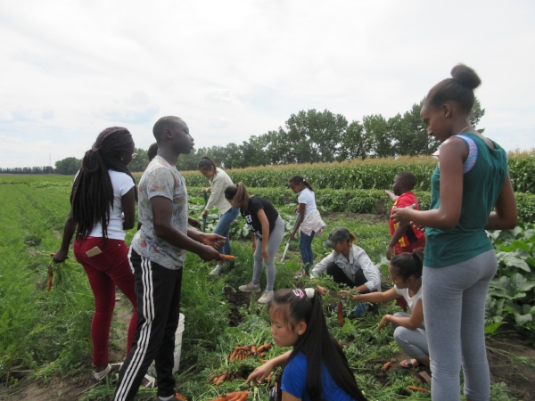Youth groups visit Lady Flower Garden and share their harvest with community.
