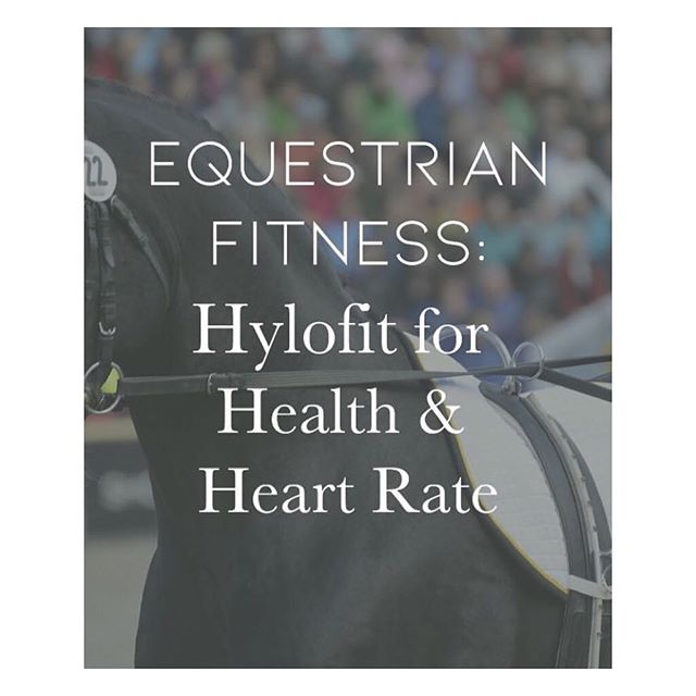 "#repost - @stablestyle. ""Learn more about monitoring your horse's heart rate (and your own) with this wearable device. It also tracks calories burned for rider. This useful data is a must for equine athletes."" #equine #fitness #health #heartrate #zones #tech #app #horse #dressage #hunterjumper #equestrian #womenintech #twohearts #ride #horsebackriding #equinesofinstagram #horsetraining #horsemanship #health #horsesofinsta"