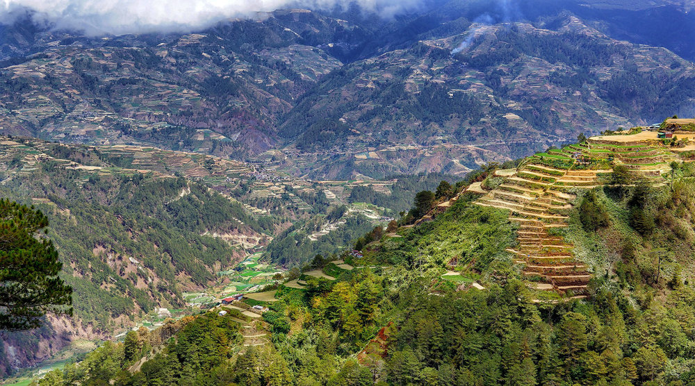 Terraced hillsides around Sagada, Mountain Province. Image:   Richard Mcall