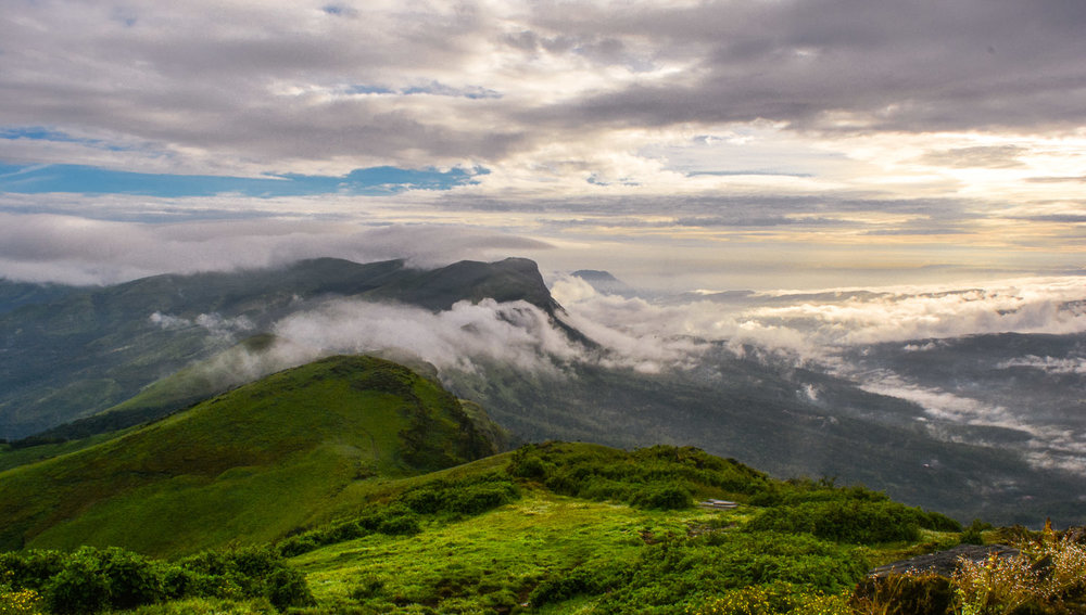 The Western Ghats stretch for 1,600 km. Image:    Prashanth G
