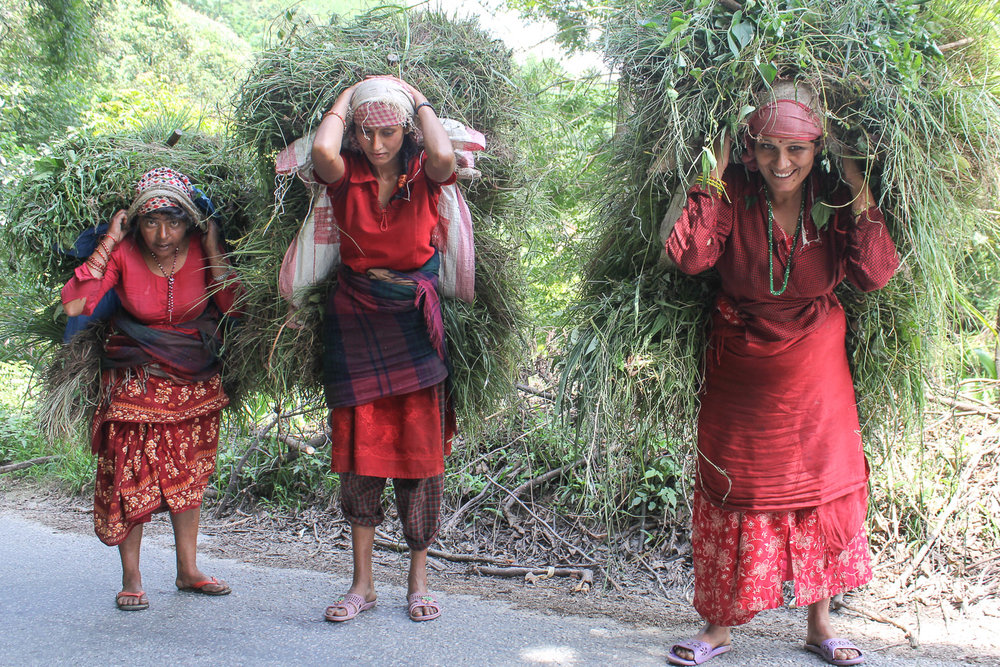 Porters on the road to Nagarkot.   Image:  © Alan Williams