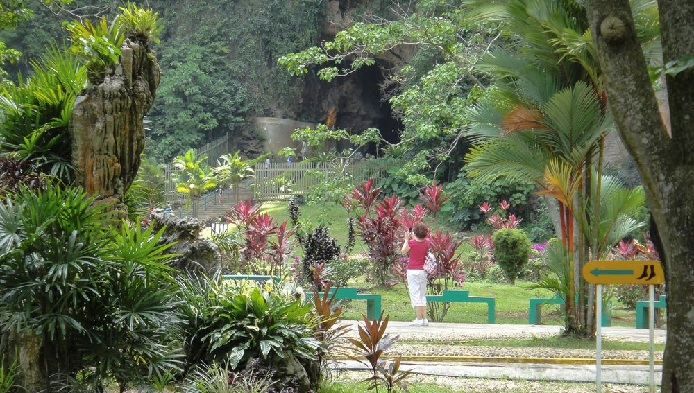 The lush Kek Lok Tong tropical gardens. Image:  ©    ericse