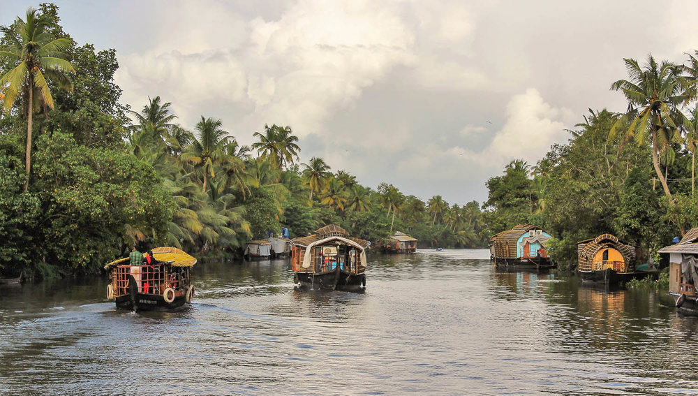 Houseboats on the Kerala backwaters. Image:     Philip Abraham