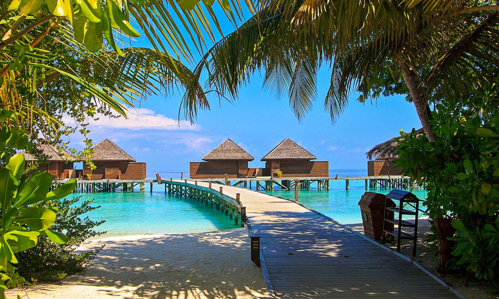 Maldives beach resort: luxurious but expensive. Image:     Sue Todd