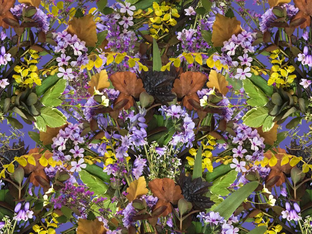 mshumaa herb mirror bg_BLUE.png