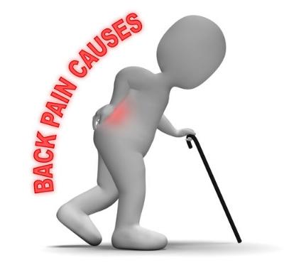 back pain education 1.jpeg