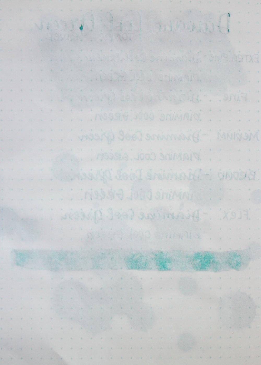 DiamineCoolGreen-022.jpg