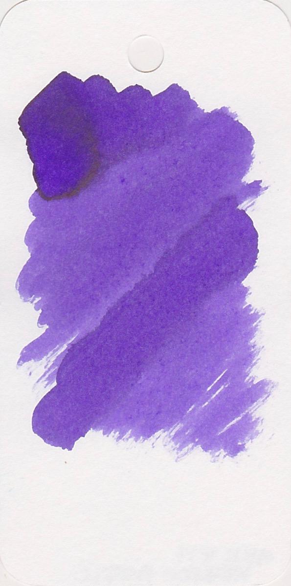 MViolet - 5.jpg