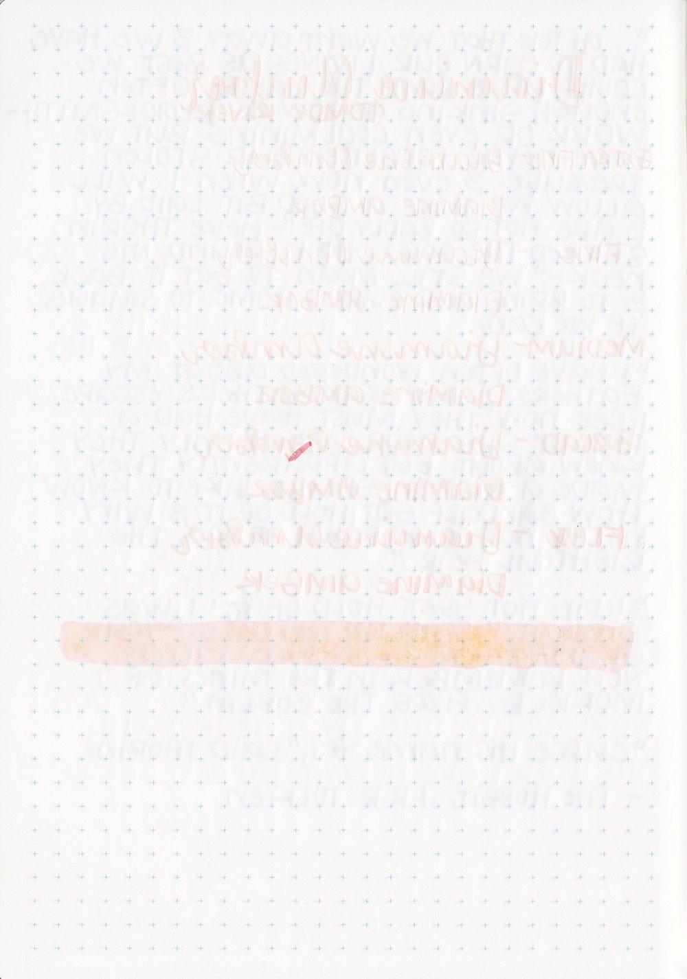 DAmber - 8.jpg