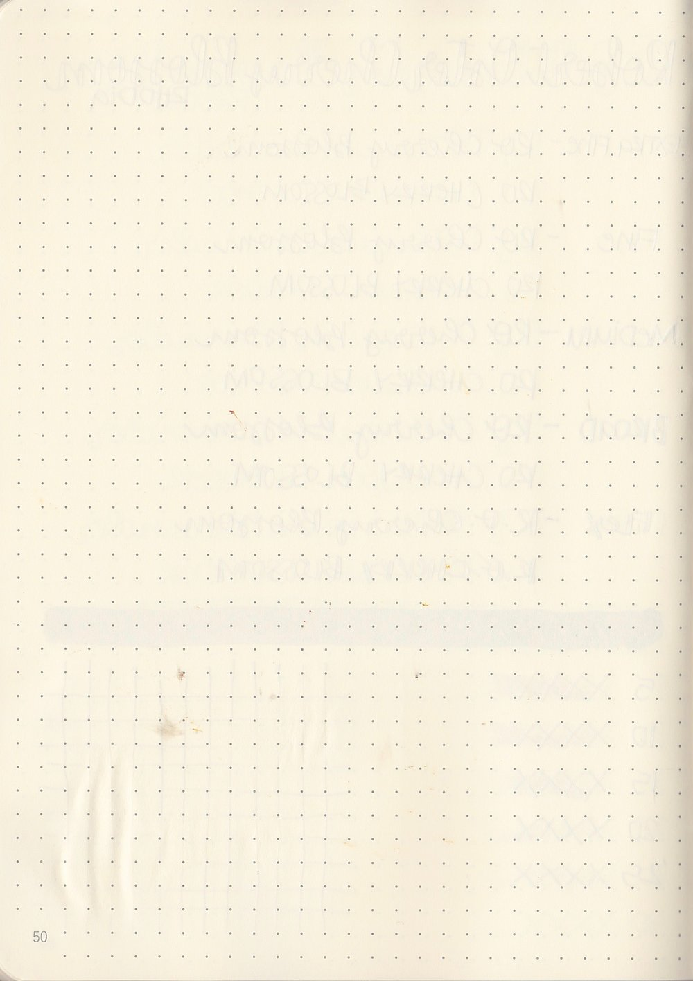 ROCherryBlossom - 7.jpg