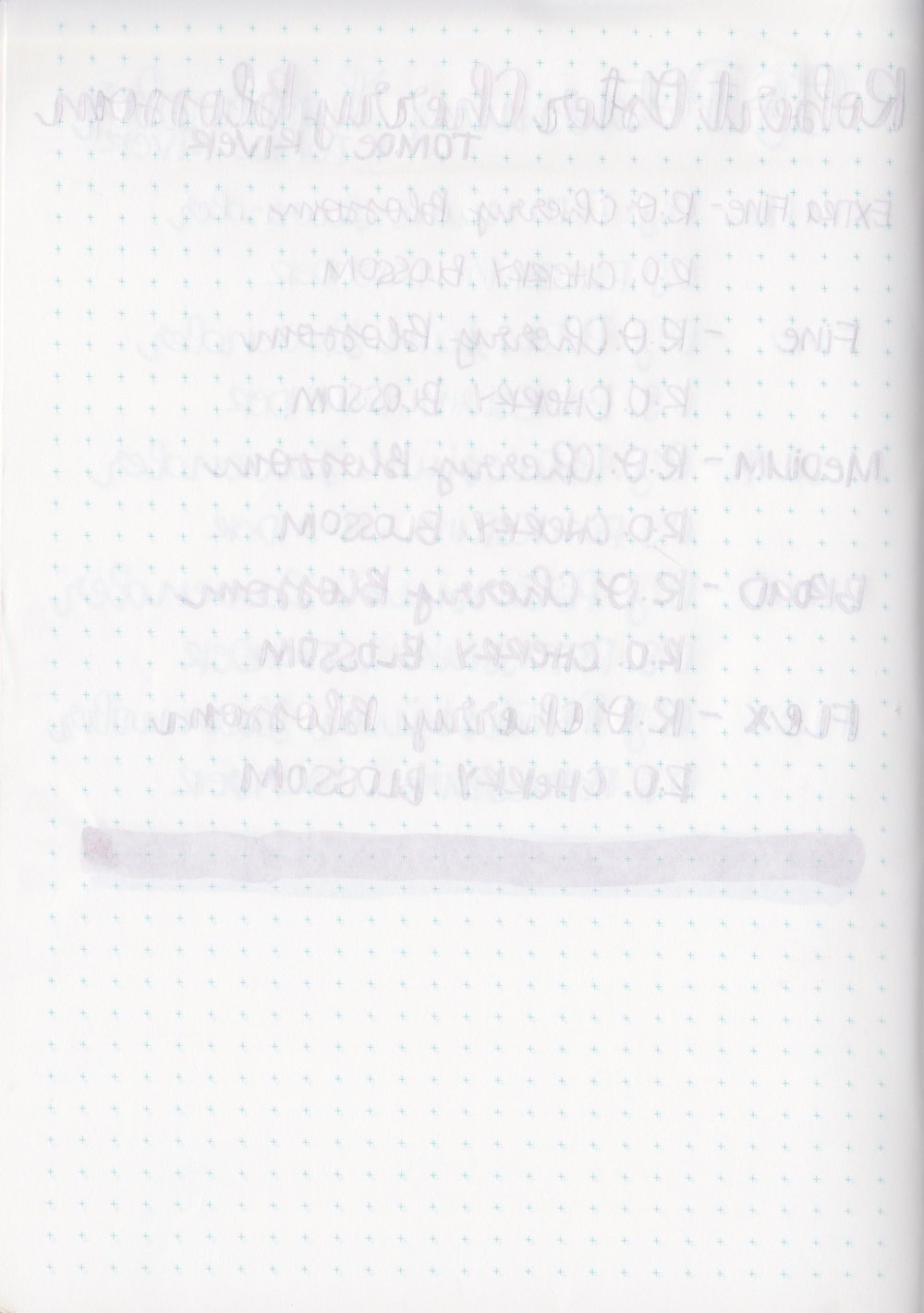 ROCherryBlossom - 9.jpg