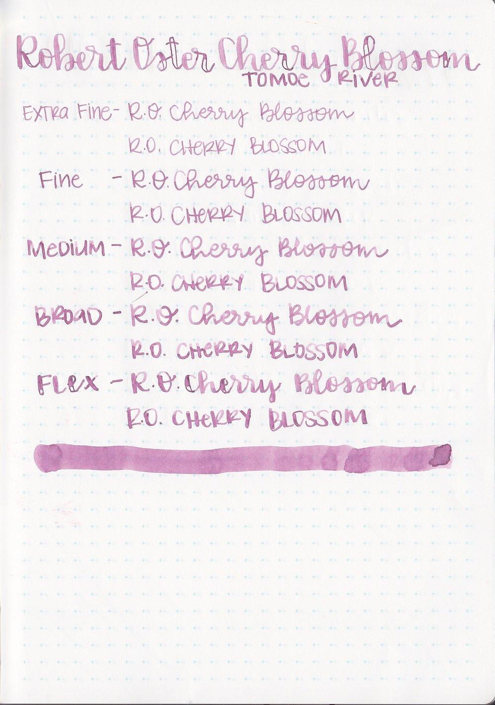 ROCherryBlossom - 8.jpg
