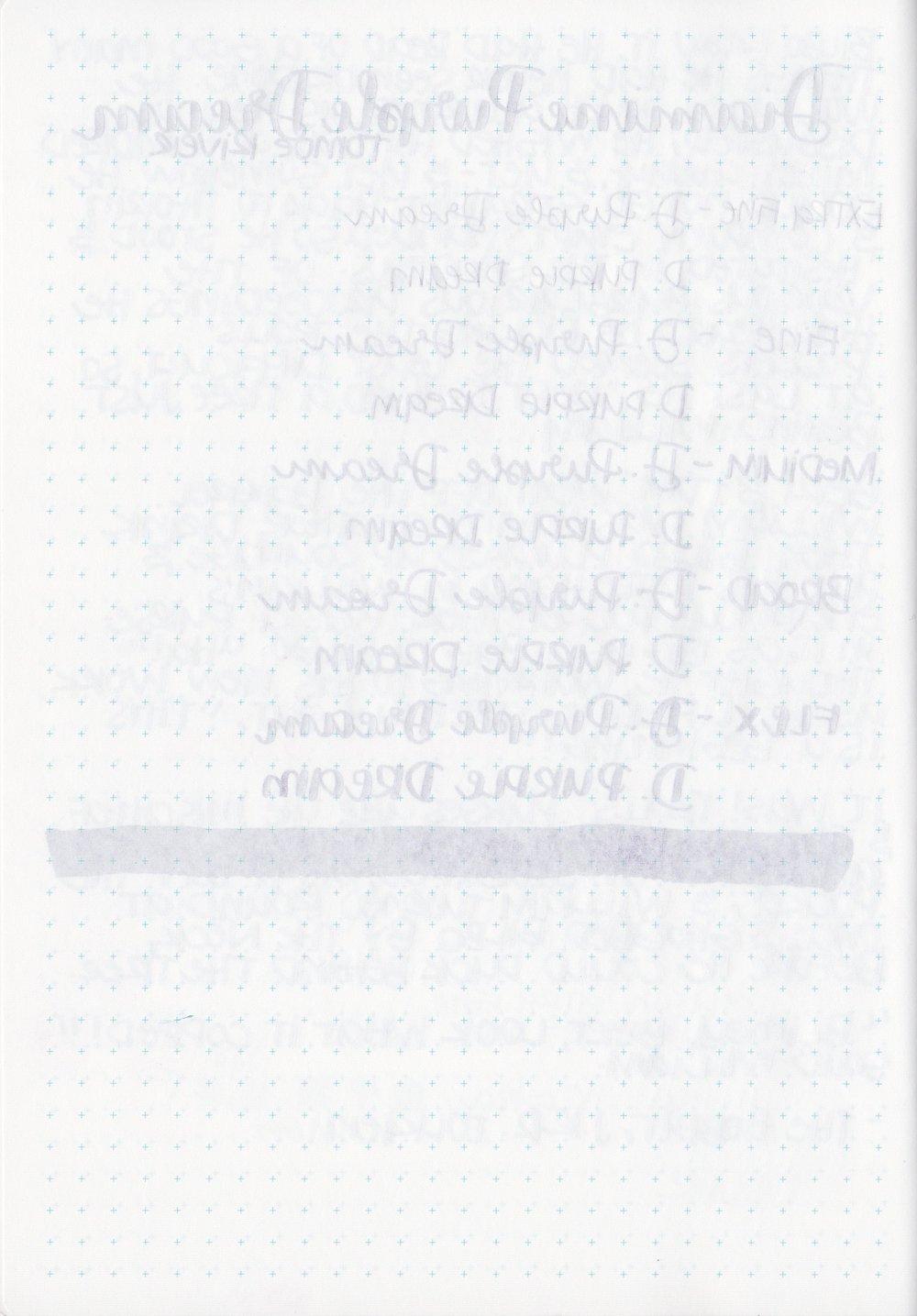 DPurpleDream - 5.jpg