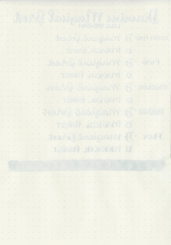 DMagicalForest-8.jpg