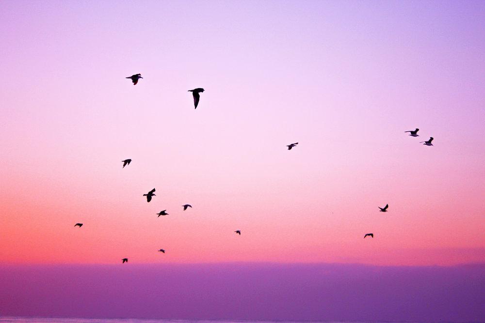 valentine-sky.jpg