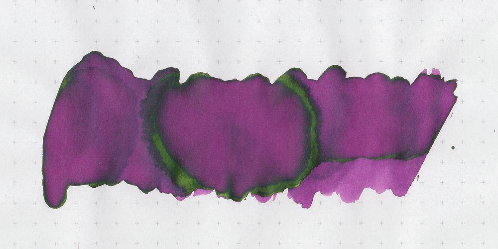 mv-rose-noir-3.jpg