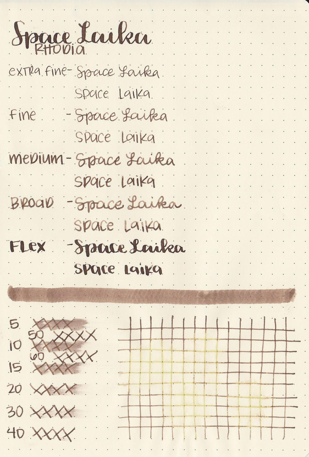 cv-space-laika-5.jpg