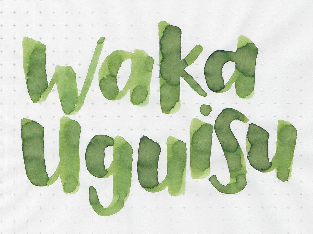 sj-waka-uguisu-2.jpg