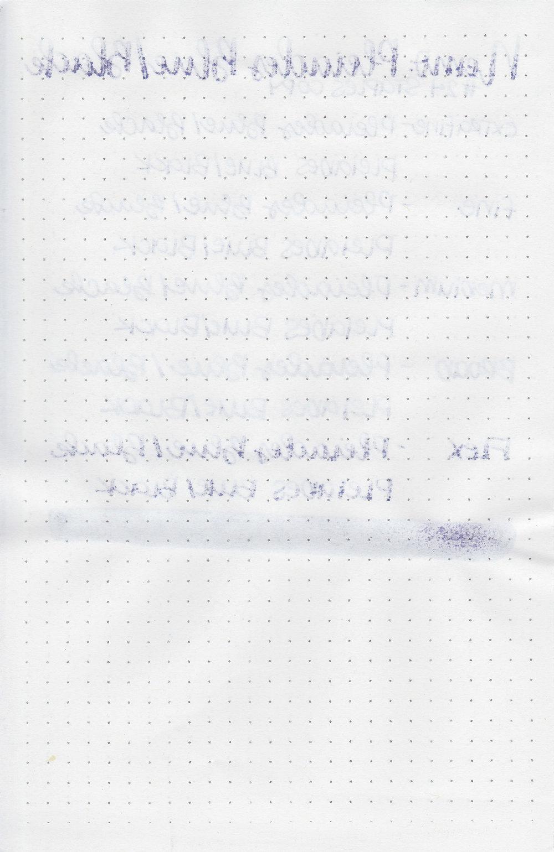 nemo-pleiades-blue-black-12.jpg