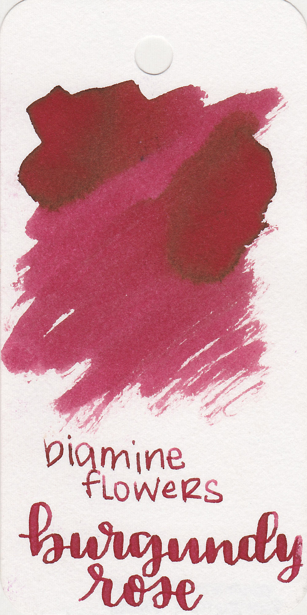 The color: - Burgundy Rose is a dark rose red.