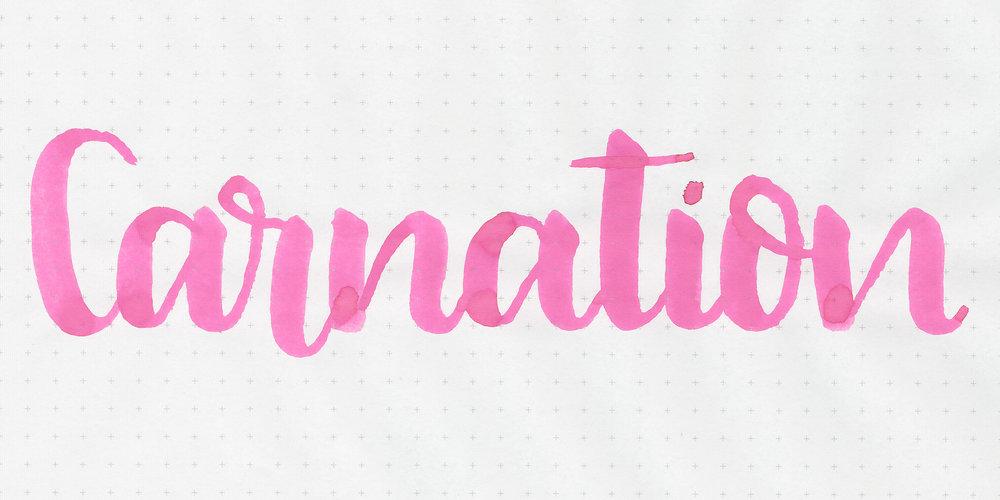 d-carnation-9.jpg