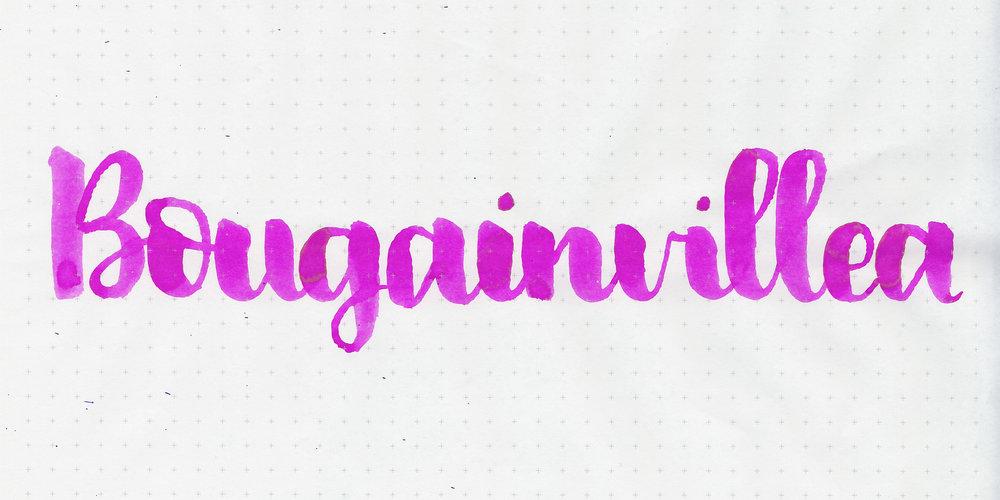 d-bougainvillea-2.jpg