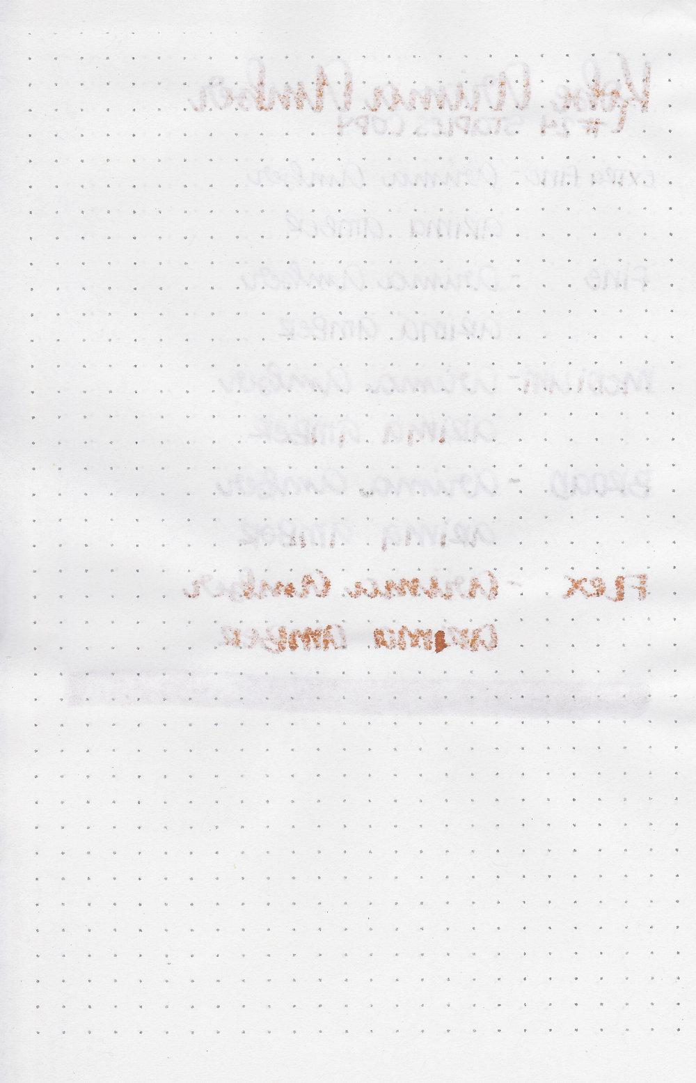 nk-arima-amber-8.jpg