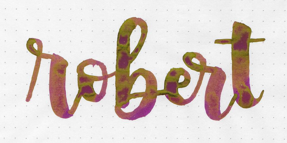 d-robert-2.jpg