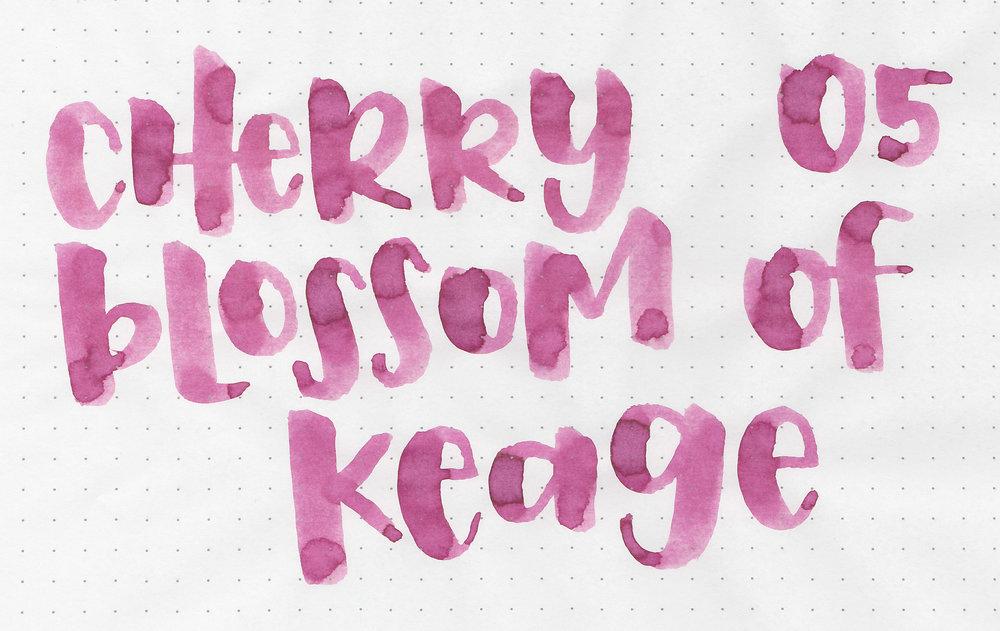 kyo-cherry-blossom-2.jpg