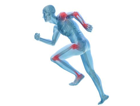 45fd9c7639631 Os benefícios do suplemento de Glucosamina e Condroitina