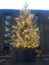 Tree at Granary Square, Kings X