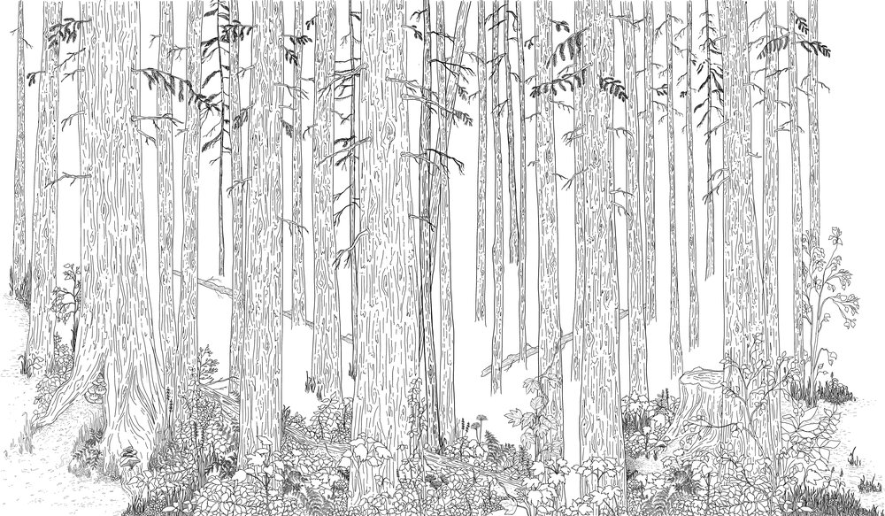 mural forest.jpg