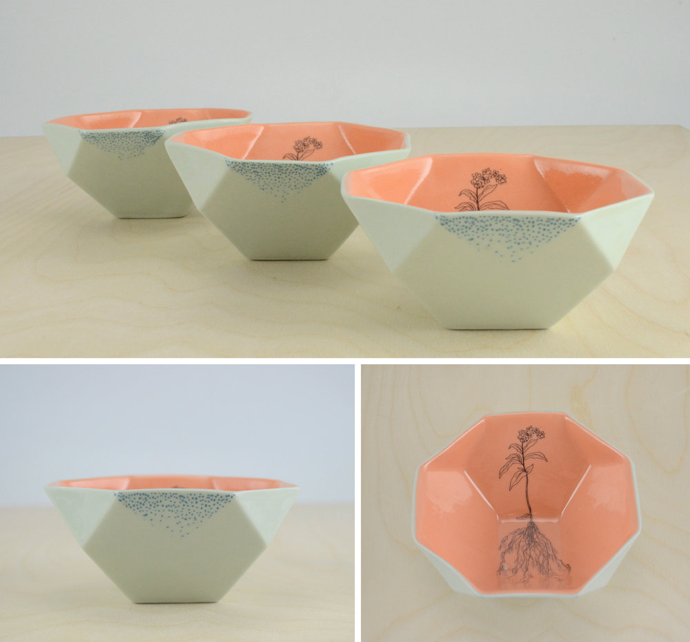 forgetmenot_bowl_cluster.jpg