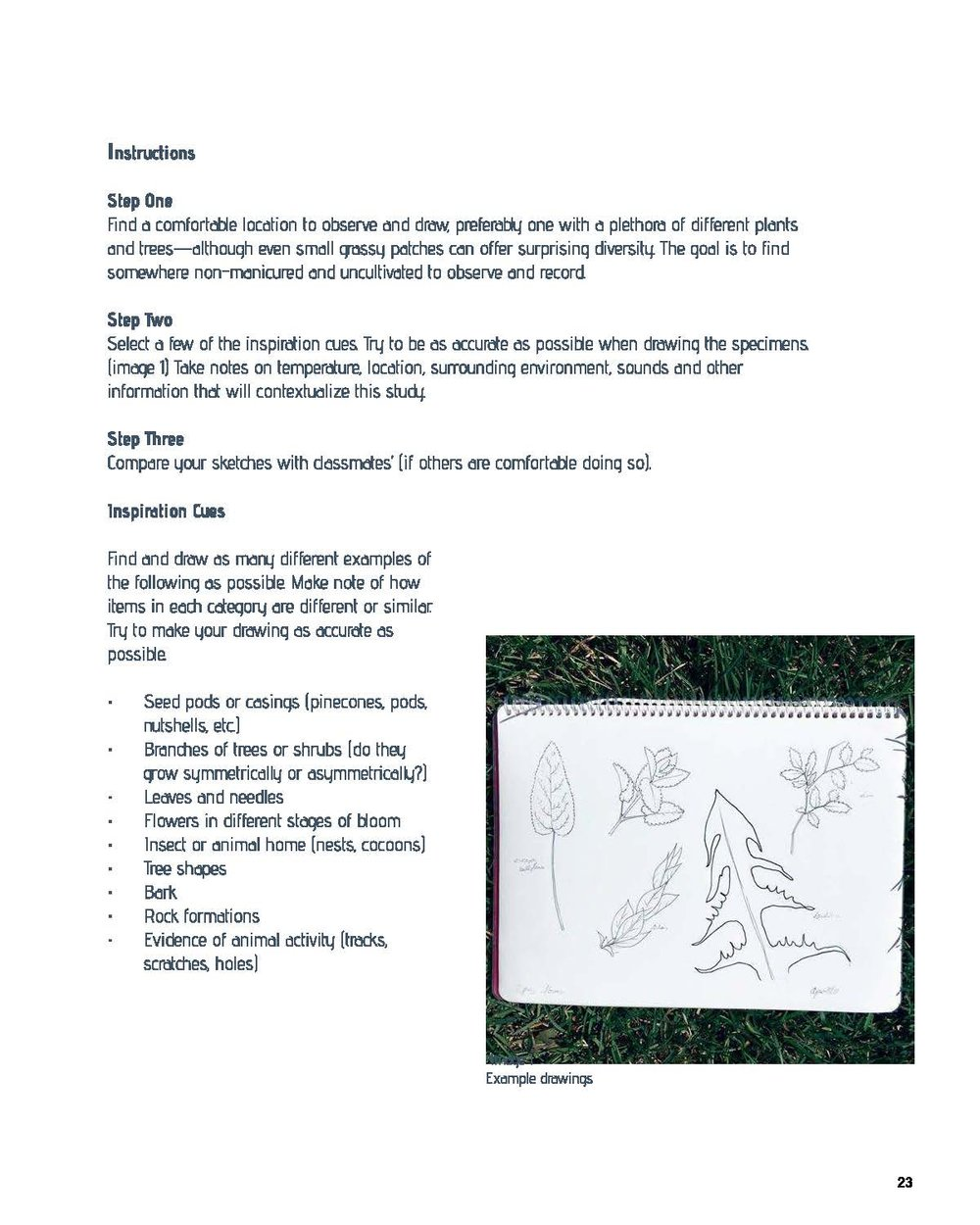 TheWild_smaller_Page_27.jpg