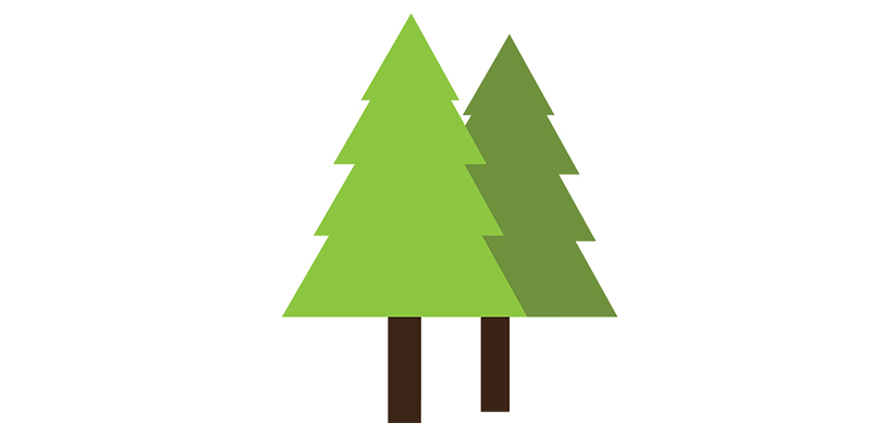 Tree long.jpg