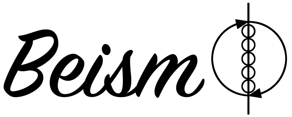 Beism Transparent logo black .png