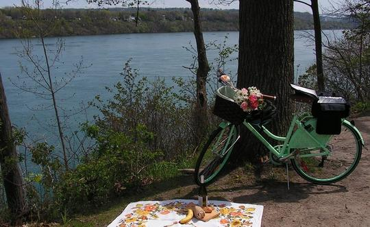 $100 for a Guided Niagara-on-the-Lake Picnic Bike Wine Tour - This tour ranges around 20 kms in distance and approximately 6 hours (11am - 5pm) to complete. This experience calls to the true wine connoisseur and the person who just want to enjoy some wine, alike. A delicious gourmet picnic lunch menu is provided in your itinerary 48 hours before the tour. Please notify us if you have any food limitations.
