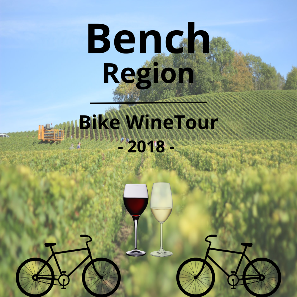 $119 FOR AN EXCLUSIVE BENCH REGION BIKE WINE TOUR FOR 2 PEOPLE (ONLY BIKE WINE TOUR IN THE BENCH REGION) - Enjoy sipping award winning wine from 4 of the most prestigious Bench Region Wineries. Whether you are a red or a white wine lover there you will be sure to have your taste buds delighted while you take in the beautiful scenery of the Bench Region.Your day starts out at 11:00 am from Sue-Ann Staff Winery where you will be checked in and will receive your bike fitted to you along with your wine passport that will act as your wine currency. We will then send you off to the first winery where you will start your amazing adventure of wine tasting.Each of the following wineries will be offering 3 select wine samples each, for 2 people.Sue-Ann Staff - 3210 Staff Ave, Jordan Station, ON L0R 1S0Flat Rock Cellars- 2727 Seventh Ave, Jordan Station, ON L0R 1S0Calamus Estate Winery- 3100 Glen Rd, Jordan Station, ON L0R 1S0Westcott Vineyards- 3180 Seventeenth St, Jordan Station, ON L0R 1S0