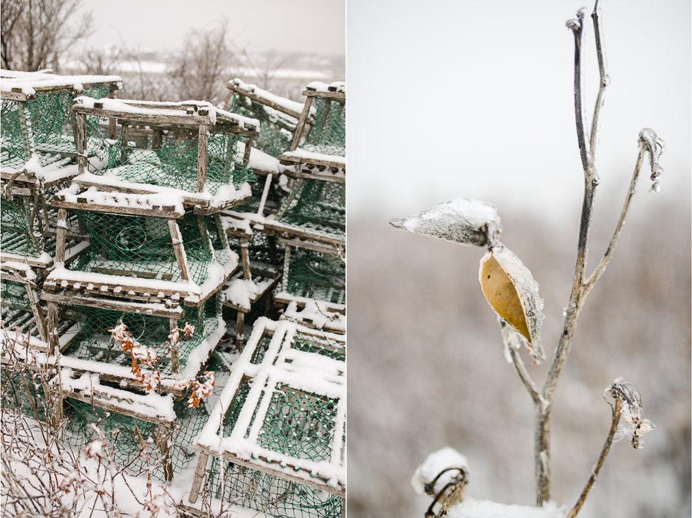 Winter in Maine 6.jpg