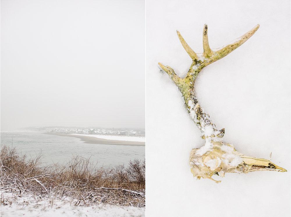 Winter in Maine 1.jpg