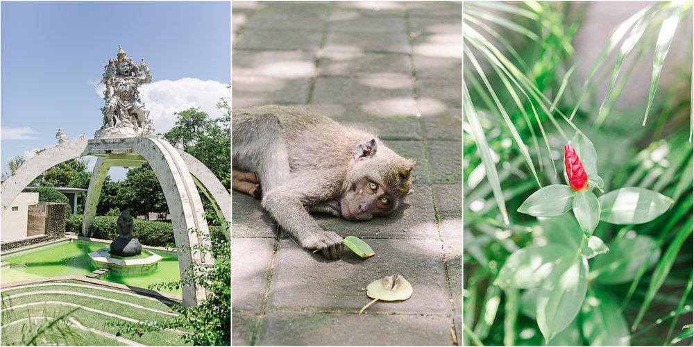Maine Wedding Photographer Travels to Bali 13.jpg